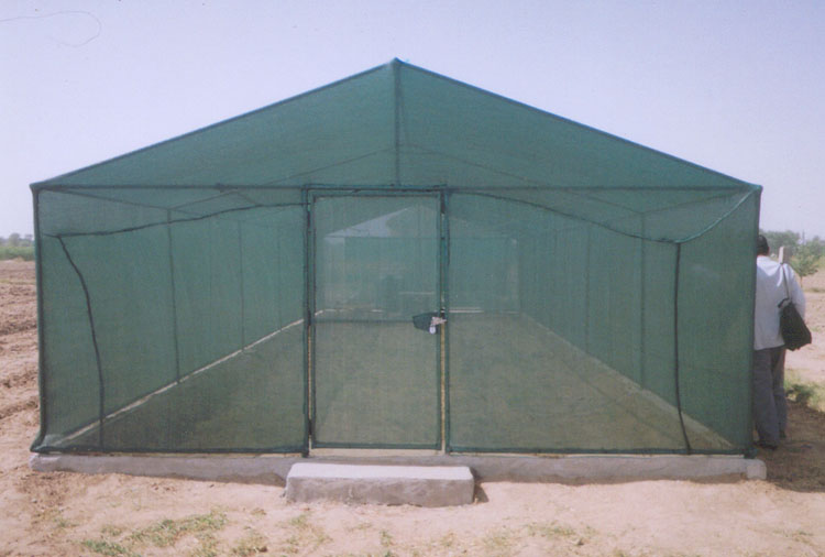 Green House under FAO Project at Tripari, Gurgaon
